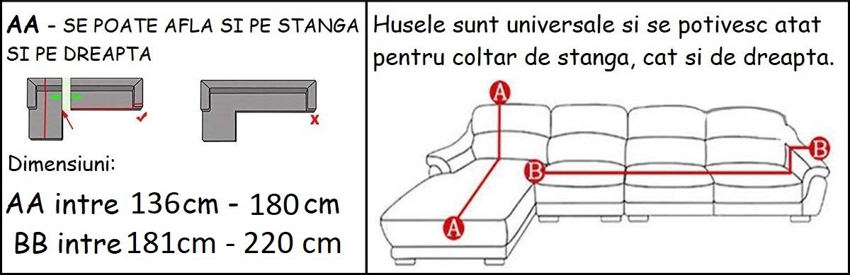 2-3H.jpg