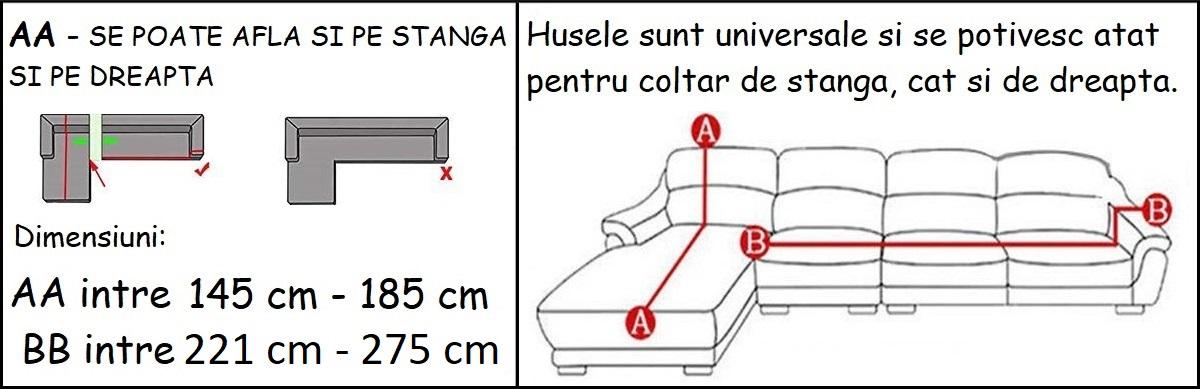 2-4H.jpg