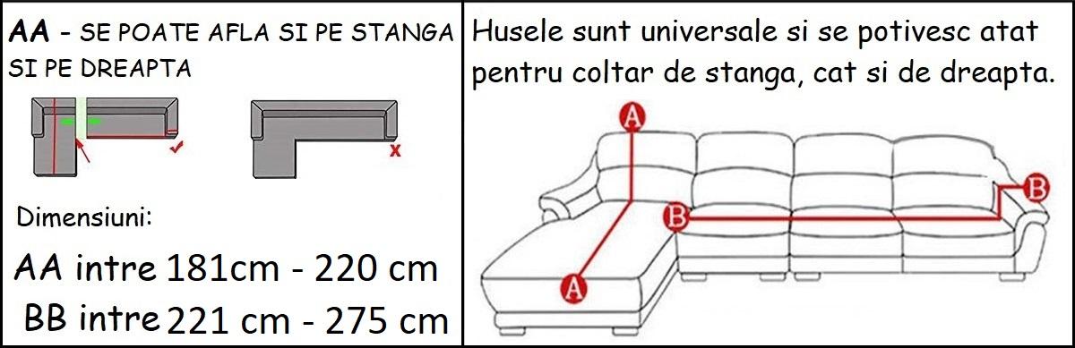 3-4H.jpg
